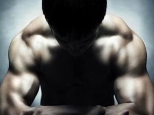 Leistung - Muskelaufbau
